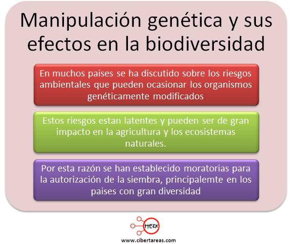 manipulacion genetica y los efectos en la biodiversidad mapa conceptual etica y valores