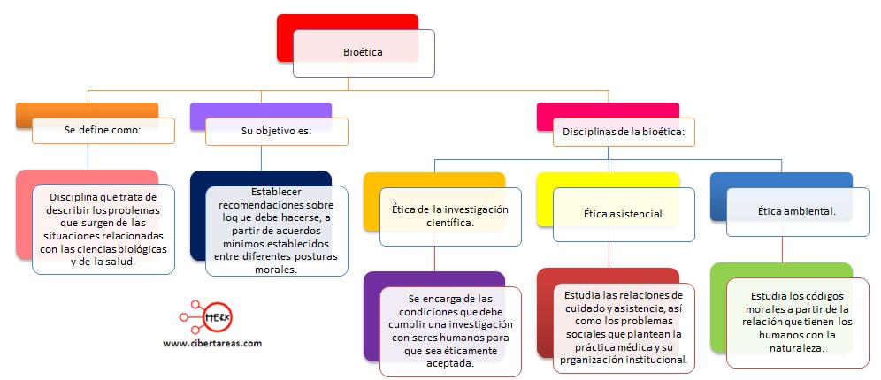 mapa conceptual bioetica etica y valores 2