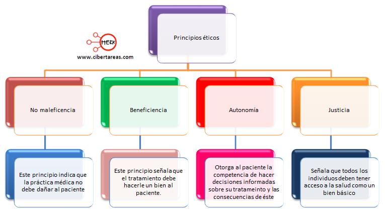 principios eticos de la practica medica etica y valores 2