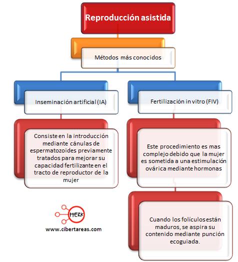 reproduccion asistida metodos etica y valores 2 mapa conceptual