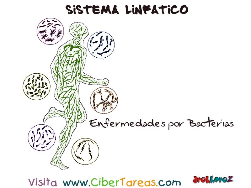 enfermedades de las bacterias: