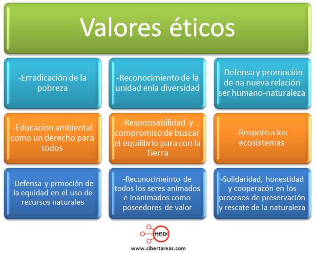 codigos establecidos por organizaciones ambientalistas de la sociedad civil etica y valores