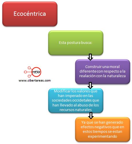 ecocentrica definicion mapa conceptual etica y valores