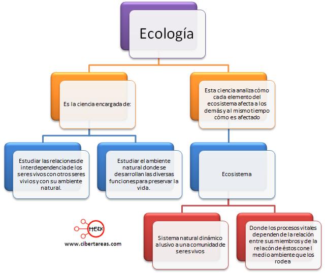 ecologia mapa conceptual etica y valores