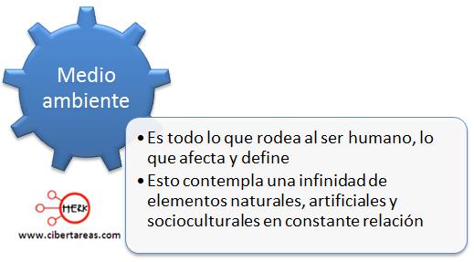 medio ambiente mapa conceptual etica y valores