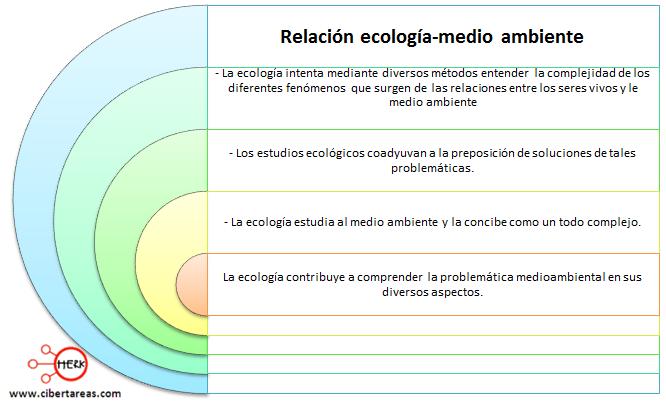 relacion ecologia medio ambiente mapa conceptual etica valores