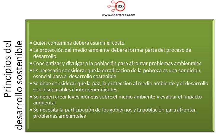 principios del desarrollo sostenible etica y valores