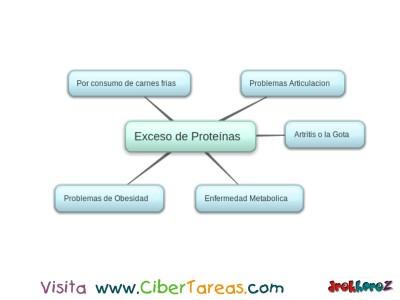 Exceso de Proteinas - Proteinas en la Alimentacion