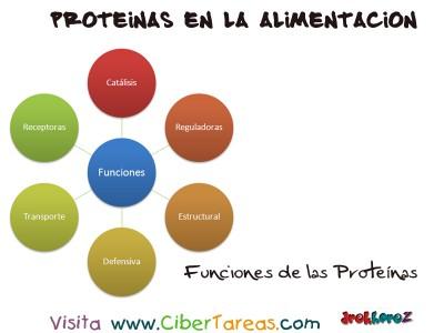 Funciones - Proteinas en la Alimentacion