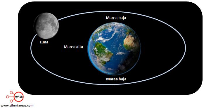 ciclo de marea alta y baja geografia