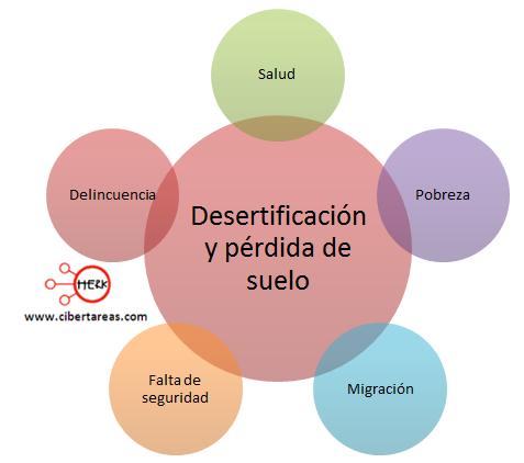 deserificacion y perdida de suelo