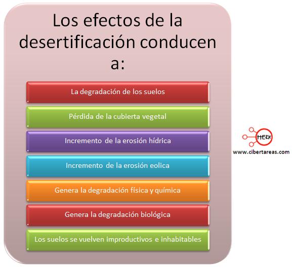 efectos de la desertificacion