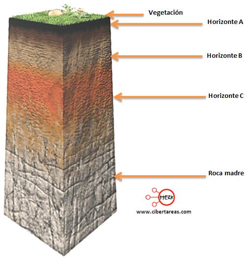 Perfil y tipos de suelo geograf a cibertareas - Tipos de suelos para casas ...