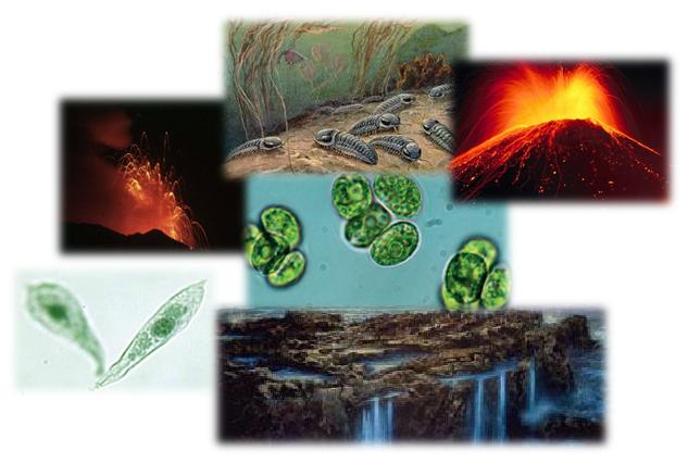 proterozoica