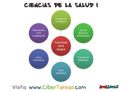 Funciones de la Sangre - Ciencias de la Salud_1