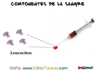 Globulos blancos o Leucocitos en la Sangre - Ciencias de la Salud_1