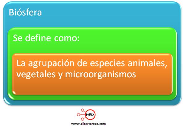biosfera definicion concepto mapa conceptual