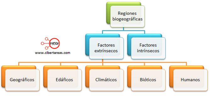 regiones biogeograficas geografia