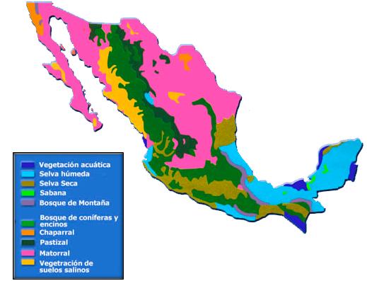 regiones naturales de mexico geografia