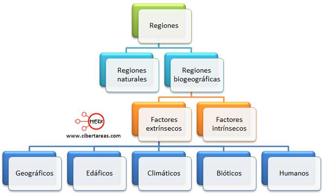 regiones naturales regiones biogeograficas