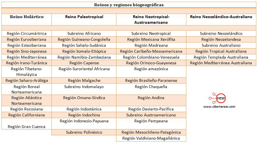 reinos y regiones biogeograficas geografia