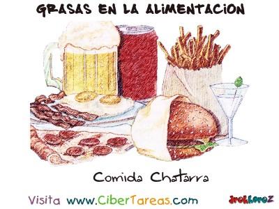Comida Chatarra - Grasas en la Alimentacion