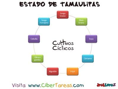 Cultivos Ciclicos - Estado de Tamaulipas