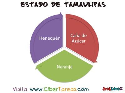 Cultivos Perennes - Estado de Tamaulipas