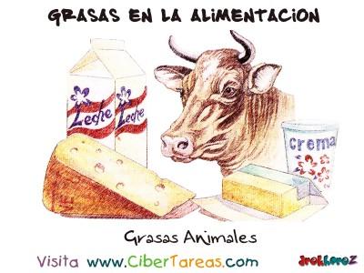 Grasas Animales - Grasas en la Alimentacion