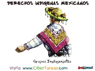 Grupos Indigenistas - Derechos Indigenas Mexicanos