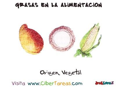 Origen Vegetal - Grasas en la Alimentacion
