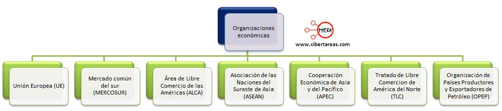 organizacion economica