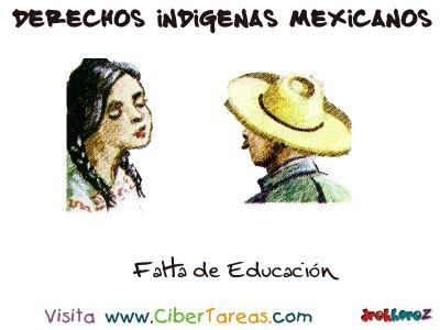 Falta de Educacion - Derechos Indigenas Mexicanos