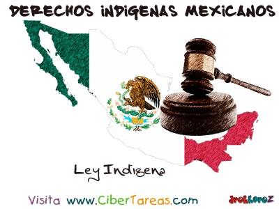 Ley Indigena - Derechos Indigenas Mexicanos