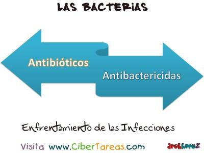 Enfrentamiento de las Infecciones - La Baterias