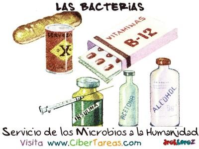 Servicio de los Microbios a la Humanidad - Las Bacterias