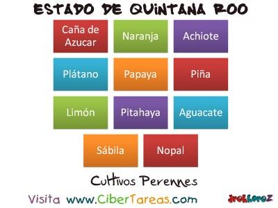 Cultivos Perennes - Estado de Quintana Roo