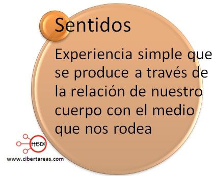 definicion de sentidos introduccion a las ciencias sociales