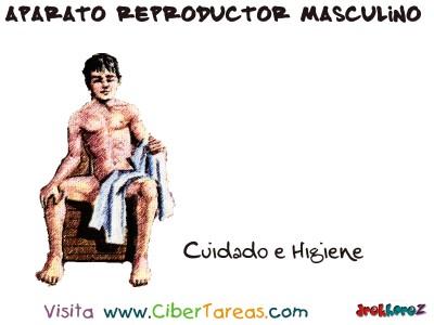 Cuidado e Higiene - Aparato Reproductor Masculino
