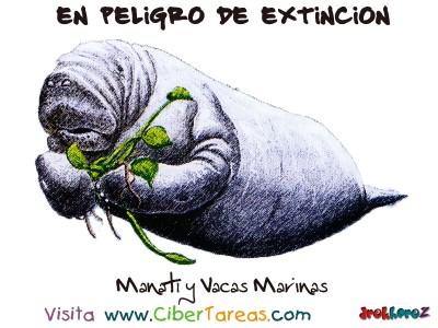 Manati y Vacas Marinas - Peligro de Extincion