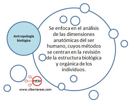antropologia biologica introduccion a las ciencias sociales