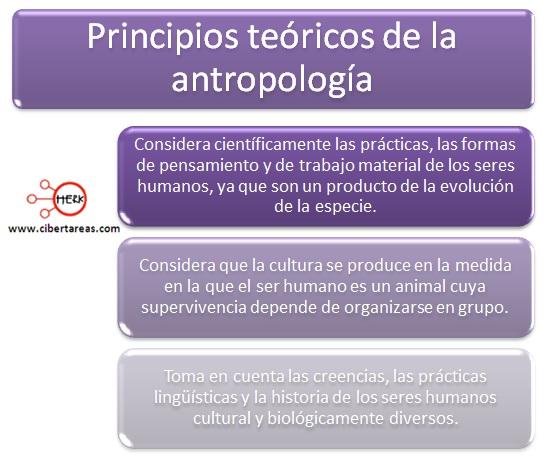 principios teoricos de la antropologia introduccion a las ciencias sociales