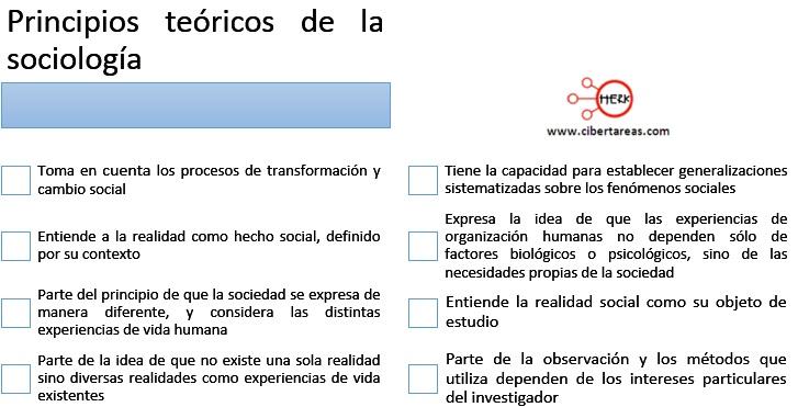 principios teoricos de la sociologia introduccion a las ciencia sociales