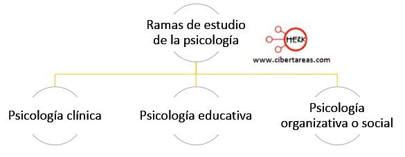 ramas de estudio de la psicologia