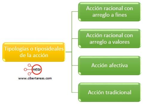 tipologia o tipos ideales de la accion