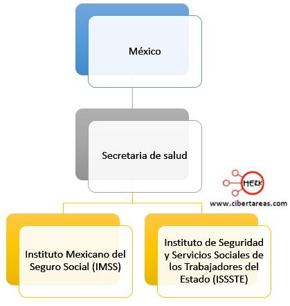 instituciones de salud en mexico introduccion a las ciencias sociales
