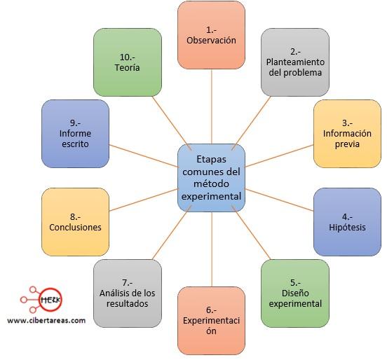 etapas comunes del metodo experimental