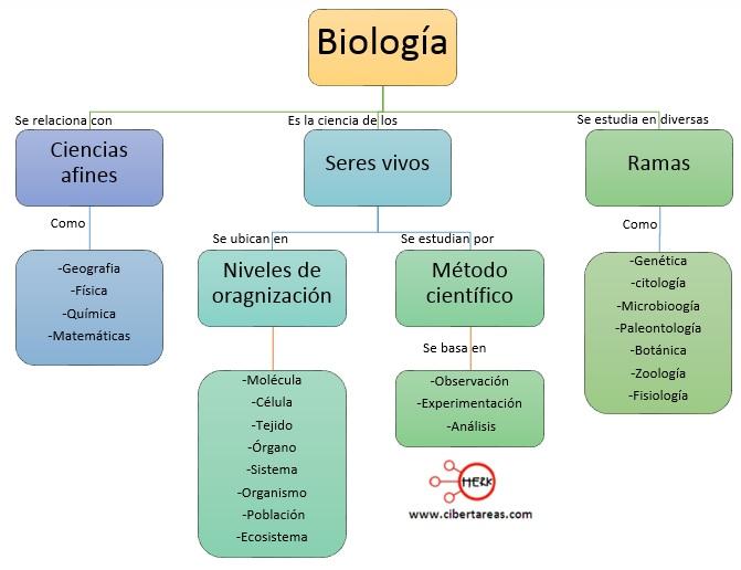 mapa conceptual concepto de biologia relacion de la biologia y otras ciencias