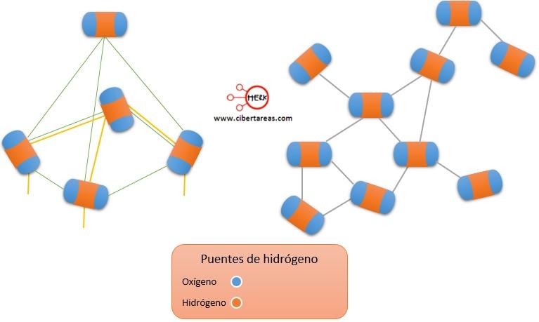 puentes de hidrogeno