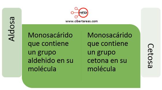 biomoleculas organicas aldosa cetosa